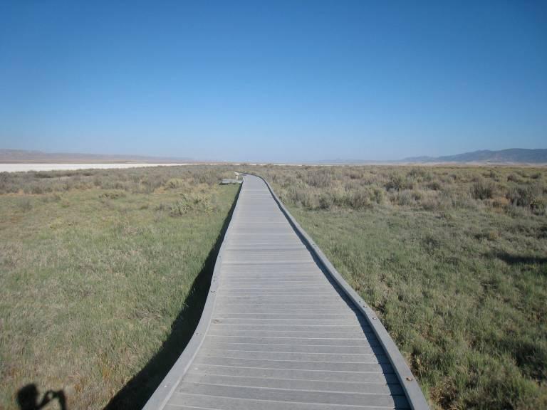 carizzo_boardwalk